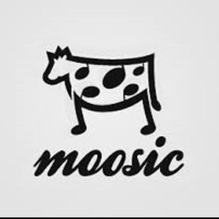 Youth Radio - The Power of Moosic