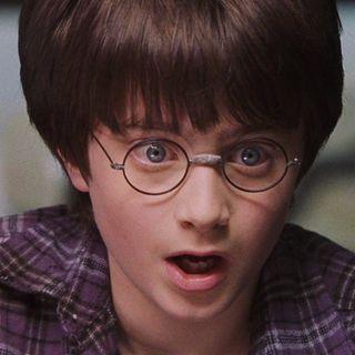 Harry's Life After Hogwarts
