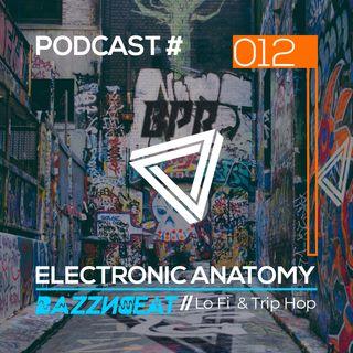 Lo Fi & Trip Hop DJ Mix with BazzNBeat | Electronic Anatomy Podcast 012
