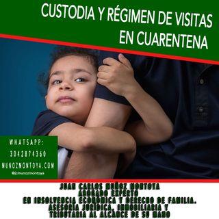 ¿Cómo cumplir con el régimen de custodia y visitas de tus hijos en la cuarentena?
