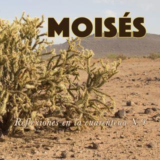 Moisés (Reflexiones en la cuarentena N.9)