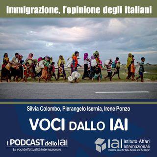Immigrazione, l'opinione degli italiani