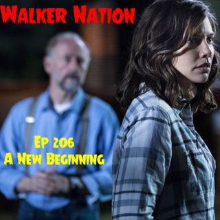 "Ep 206 ""A New Beginning"" TWD 901"