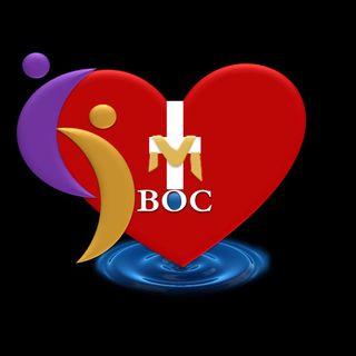Interactive Bible Experience  1 Corinthians