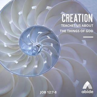 God's Divine Design