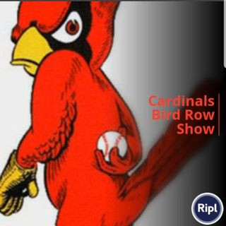 Cardinals Red Bird Row