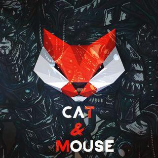 Cat & mouse #33