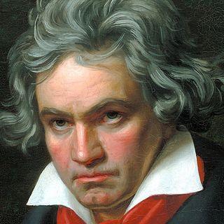 La musica classica di LifeGate - 15