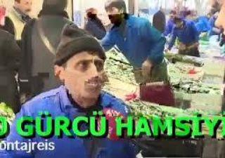Piç Gürcü Hamsisi(MP3_160K)