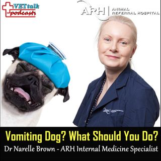 Vomiting Dog? Dr Narelle Brown & Dr Sarah Goldsmid