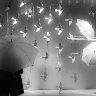 Gli ombrelli - Origini, simbologia e funzione