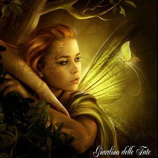 MEDITAZIONE, Elfi e Fate dei Boschi