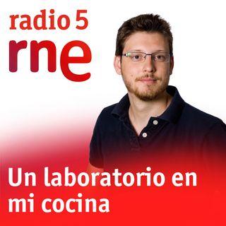 Un laboratorio en mi cocina - Las elaborinas - 22/7/18