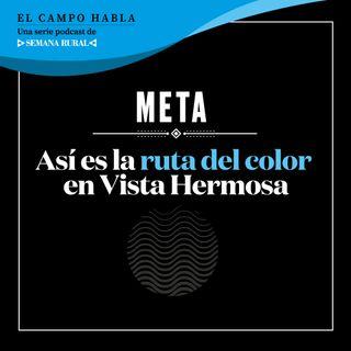 Meta: Así es la ruta del color en Vista Hermosa