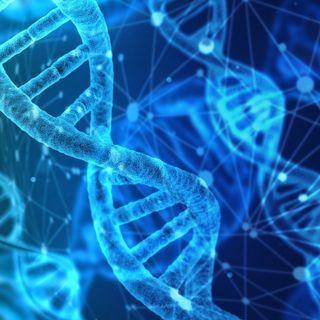 Autismo: scoperti i geni e le relative mutazioni genetiche che causano il disturbo