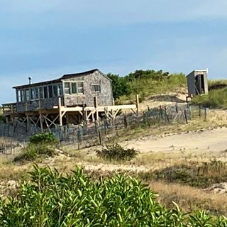 Tucked In Cape Cod Dunes, Artists' Famed Shacks Still Stand