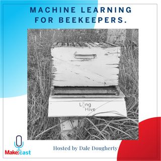 Machine Learning for Beekeepers