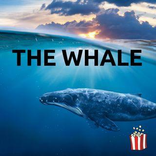 Sogni dalla quarantena: in Norvegia a vedere le balene