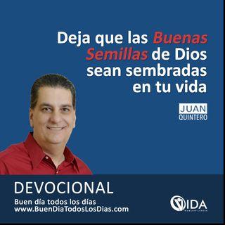 Juan C Quintero