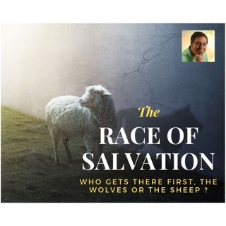 The race of salvation, the wolves and the sheep who got there first
