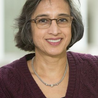 Episode 10: Ensuring Archivists are Respected for Their Work (Sharmila Bhatia)