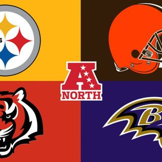 The NFL Show: AFC North Free Agency and Off-season overview