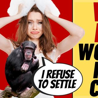 Woman Wants To Marry Zoo Chimp, Other Weird News