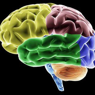 Ментальность, психология и осознанность в спорте
