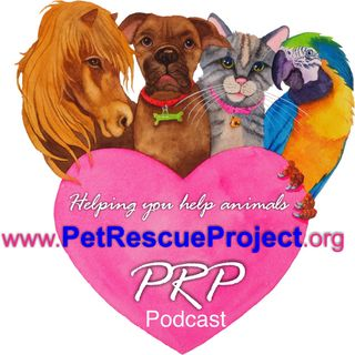 Pets & Critter Talk With PRP