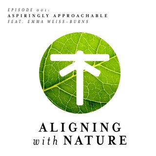 Episode 0001 - Aspiringly Approachable