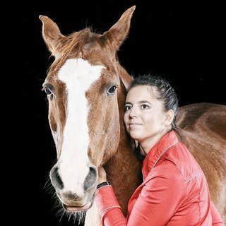Alfa Horse K.Ściborowska