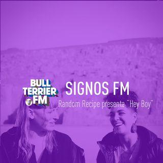 Random Recipe presenta la reversión a Hey Boy - SignosFM