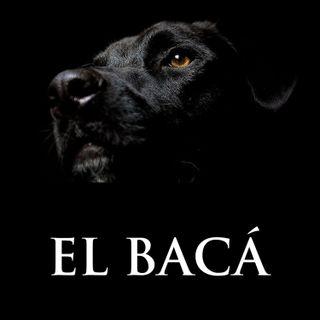 El Bacá