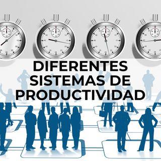 05 Diferentes sistemas de productividad