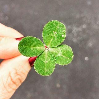Creando tu suerte