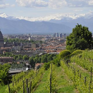 Tutto Qui - Martedì 26 Marzo - Turismo: l'ottima annata del Piemonte