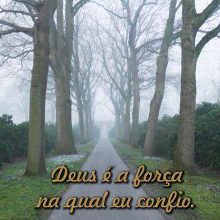 Reflexão 073 - Deus é a força na qual eu confio