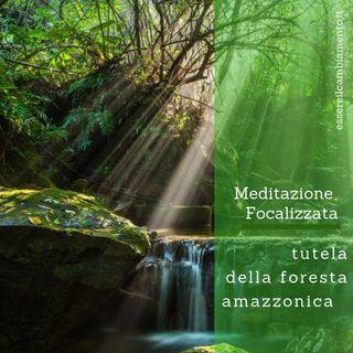 Stamattina meditiamo assieme per la tutela della foresta amazzonica 💚🌿🌱🌲