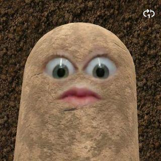 Life Potatoes