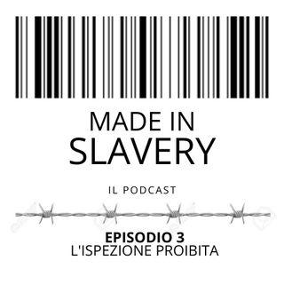 Episodio 3 - L'ispezione proibita