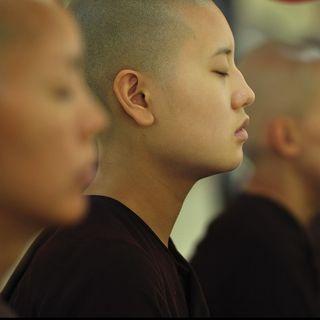 171 - Meditazione: ecco cosa ho imparato da 4000 aspiranti meditanti...