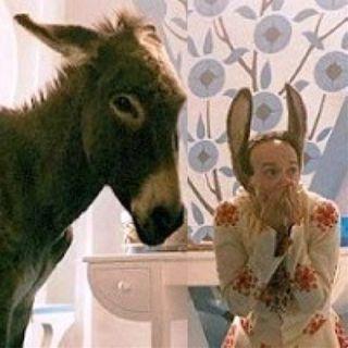 FILM GARANTITI:  Pinocchio - Differenze fra il libro ed il film di pinocchio (2002)****