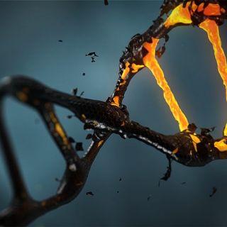 Az Isten-gén, spiritualis novella