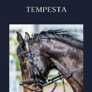 TEMPESTA 5/6  Part.
