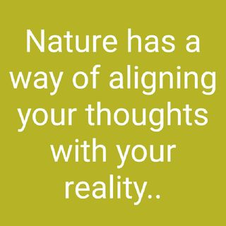 Nature Has A Way Of Aligning Your Thoughts With Your Reality