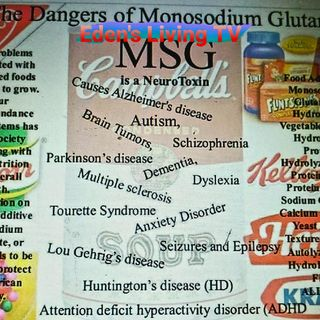 The HEALTH DANGERS OF MSG