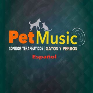 #01 Sonidos Terapéuticos para Tranquilizar a los Perros | PetMusic