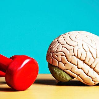 ¿Cómo conservar joven nuestro cerebro?