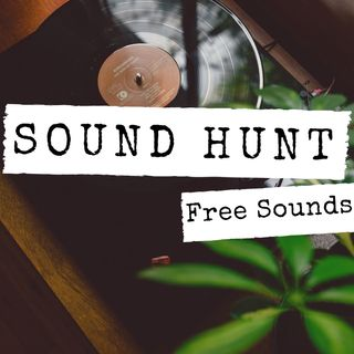 Sound Hunt - Free Sounds - CC-BY