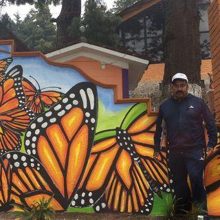 Continúa desaparecido defensor de la mariposa monarca